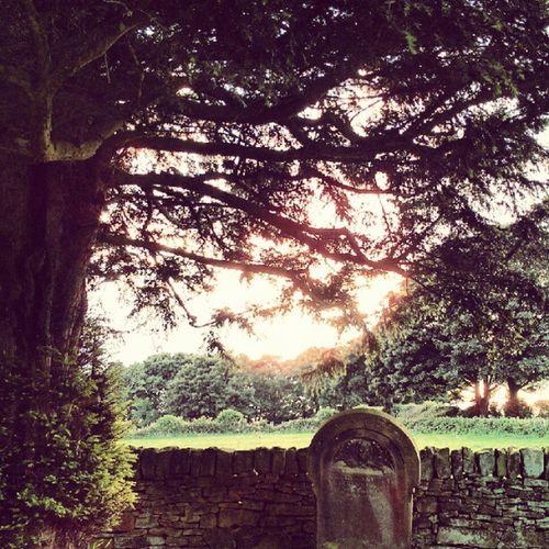 #graveyard #grave #sun #subset #tree #wall #drystone