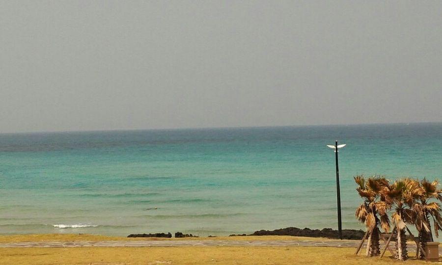 JEJU ISLAND  작년 제주도🗻 Memory Of Travel 2014 Sea And Sky On The Beach 다시 가고싶다.. 한라산아~ 기다려!!ㅋ Halla Mountain Mountaineering in Seoul