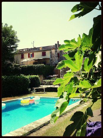 Swimming Pool Enjoying The Sun Provence 25 Days Of Summer
