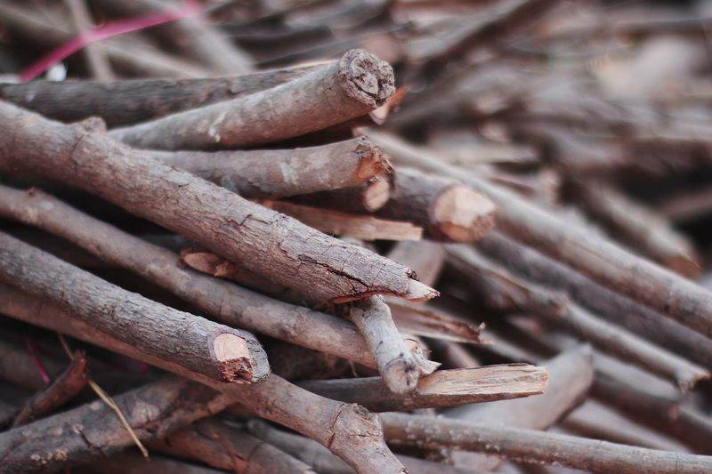 Piles of Wood Close-up Focus On Foreground Wood - Material Stack Log Day No People Firewood High Angle View Wood Outdoors Large Group Of Objects Brown Timber Textured  Abundance Nature Still Life Forest Nail