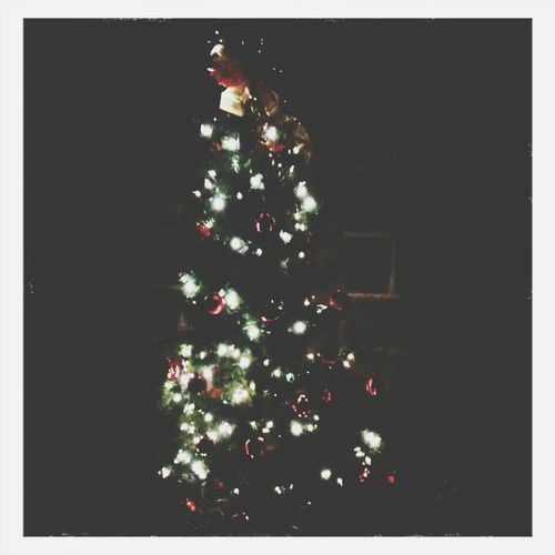 Christmas Tree First Eyeem Photo