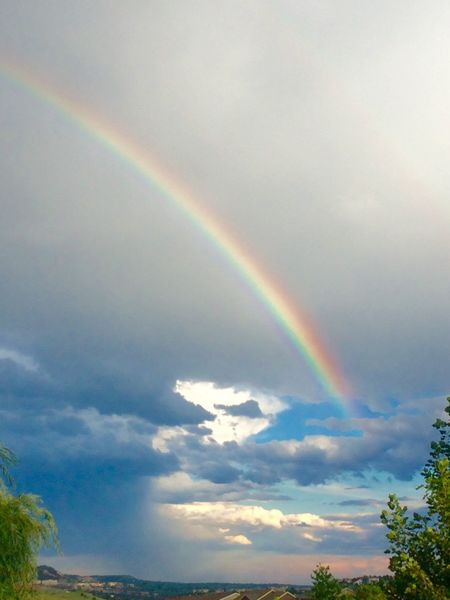 Colorado Springs rainbow Rainbow Multi Colored Scenics Beauty In Nature Tranquil Scene Tranquility Nature Tree Sky Arch Majestic Idyllic Cloud Natural Phenomenon Ethereal Cloud - Sky Colorado Springs Colorado Colorado Photography