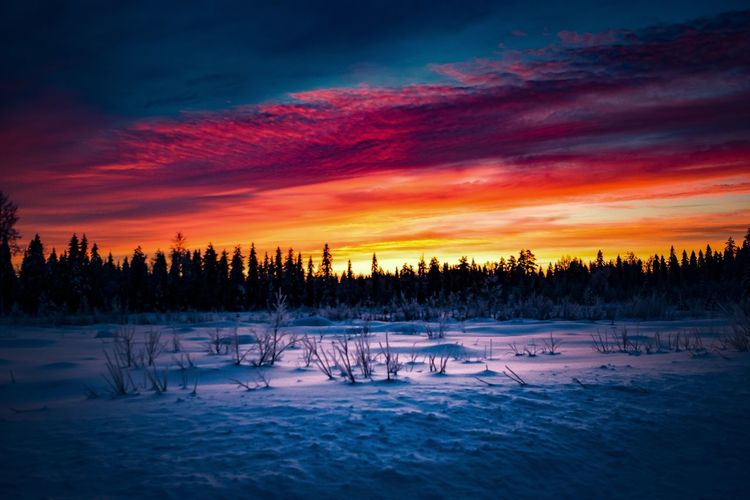 Winter color landscape Winter Sunset Scenics - Nature Sky Tranquil Scene Cold Temperature Beauty In Nature Snow Tranquility Tree Cloud - Sky Orange Color Nature No People Landscape Non-urban Scene Idyllic Outdoors Lapland Finland Photography Evening Clouds And Sky Clouds Colors Night Nightphotography Landscape_photography Nature_collection Nature Photography Winter Light And Shadow Atmospheric Mood Sunlight Colorful Woods Forest Horizon View Scenics Freshness Silhouette Taking Photos Hanging Out Hello World Check This Out Eye4photography  Moody Sky EyeEm Best Shots EyeEm Nature Lover Explore Bright Backgrounds Enjoying Life Red Yellow Sun Multi Colored Skyporn Naturelovers