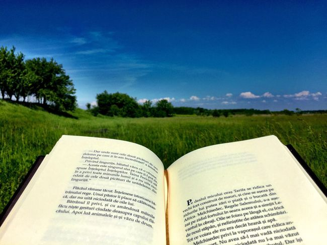 Reading A Book Reading In Nature Reading Books Reading & Relaxing Grass Nature Brook & Nature Escaping Book Enjoying Life The Alchemist The Great Outdoors With Adobe The Great Outdoors - 2016 EyeEm Awards