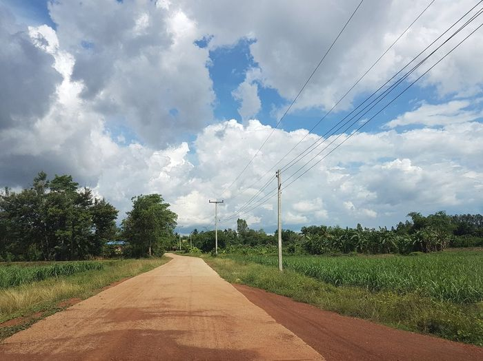 Thailand Eastern Thailand Travelling Travel Photography Off The Beaten Path Cloud - Sky Sky Tree Nature The Way Forward No People Agriculture Outdoors Day Rural Scene Technology Beauty In Nature Bird First Eyeem Photo Sunny Day Everyday Asia No Edit/no Filter Nofilter No Filter Sa Kaeo