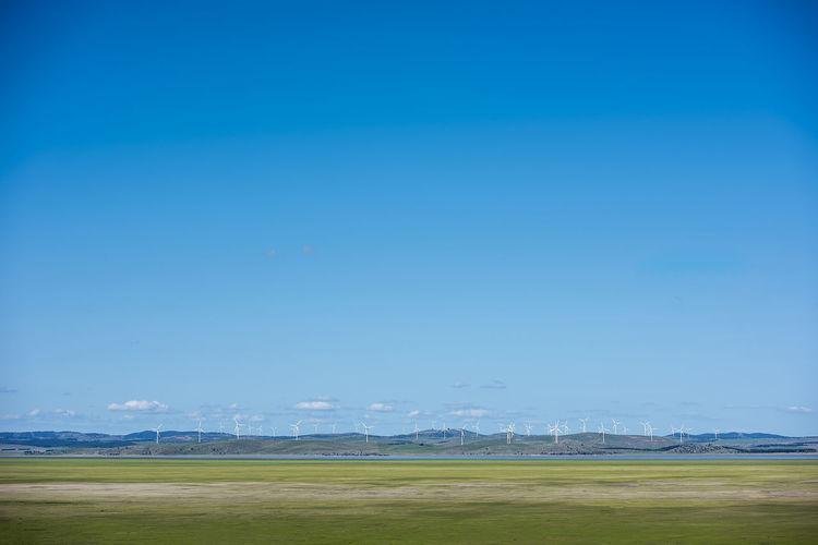 Canberra wind
