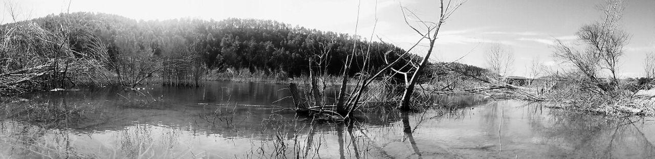 Water Nature Blackandwhite Landscape Catalunya Black & White Catalonia Water Reflections Water_collection Nature_collection Paisatges Catalans Landscape_Collection EyeEm Nature Lover EyeEm Best Shots