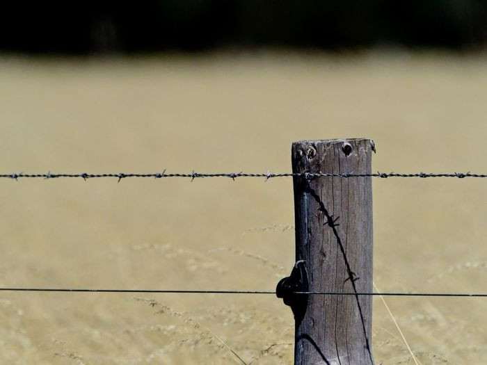 Close-up of fence on wooden post