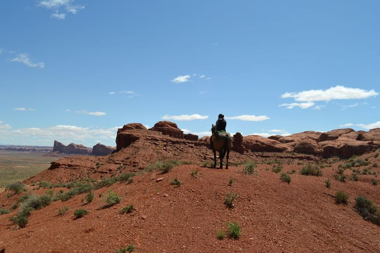 Rear view of person riding horse at desert
