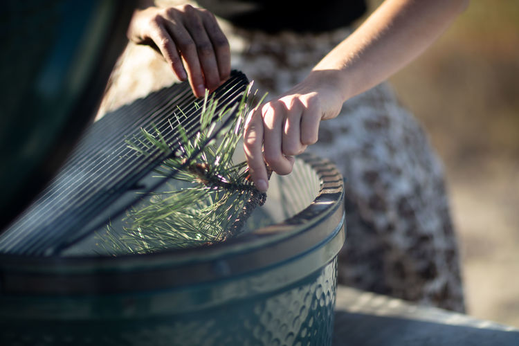 Close-up of woman holding plant in bin