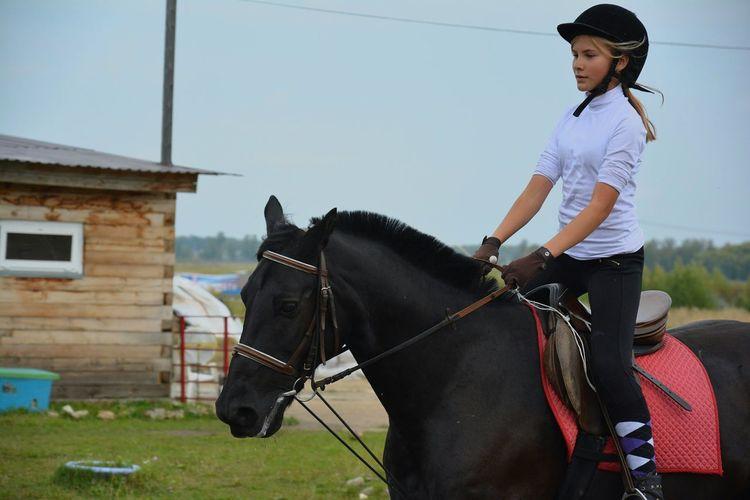 Jockey Riding Black Horse Against Clear Sky