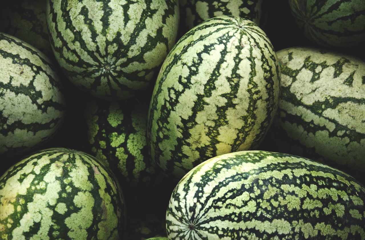 Full frame shot of watermelons for sale at market