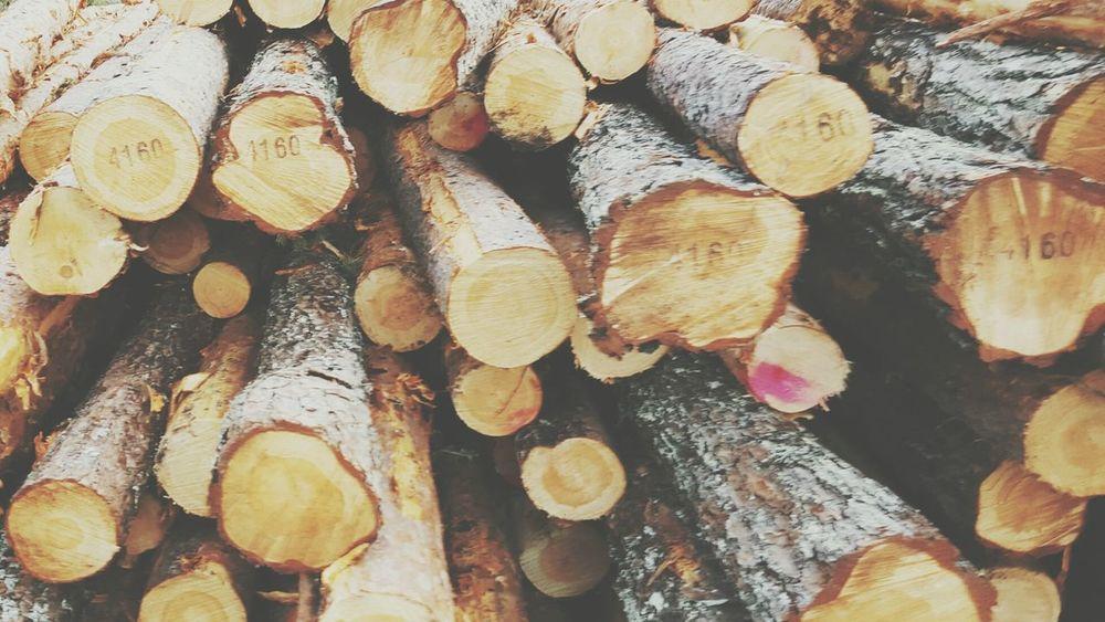 Lumber, Timber, Planks, Planking; Logs, Sawlogs