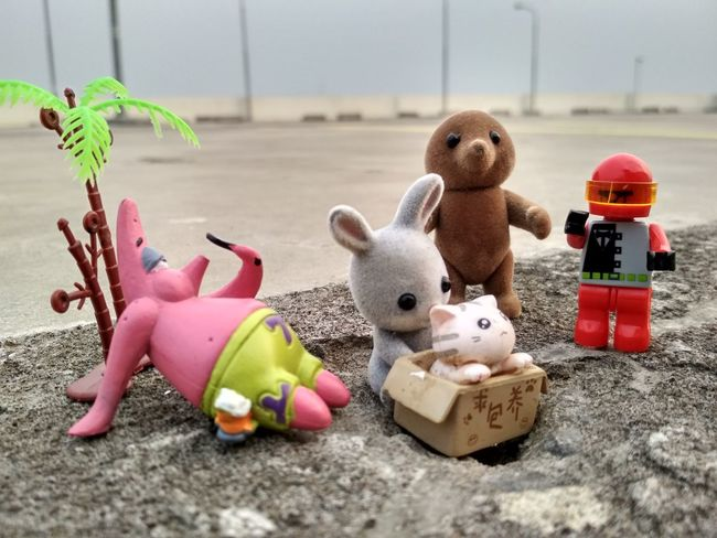 EyeEm Selects Sand Pail And Shovel Childhood Stuffed Toy Doll Beach Toy Close-up