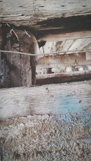 Taking Photos Hello World Enjoying Life Photograph Photo Photographer Photography Perspective Photography Perspective Grunge Winter Vintage Vintage Photo Nature Adventure Under A Bridge Under The Bridge Nature Photography Bridge