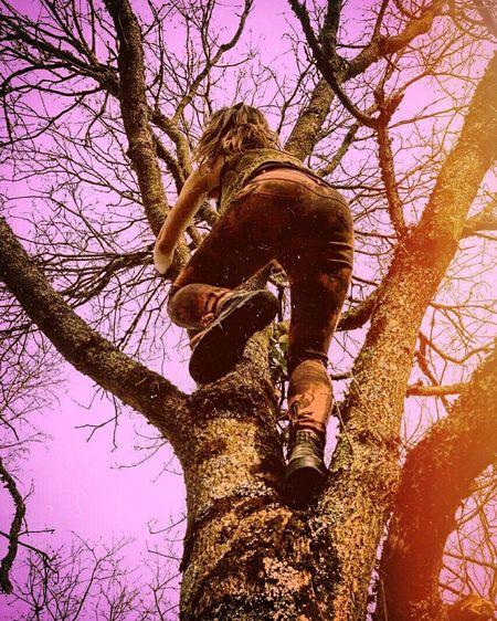 Monkey Tree Sky Nature Climbing Monkey Wild Wildchild First Eyeem Photo