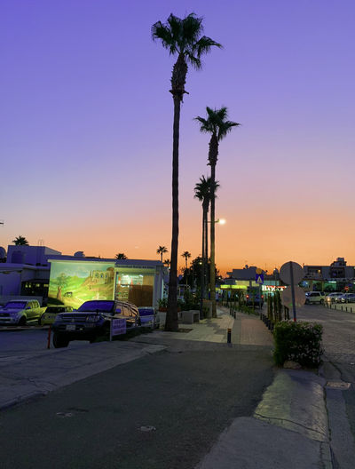 Road by palm trees and buildings against sky during sunset