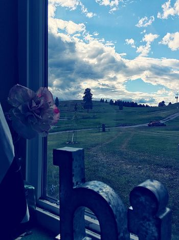 finally. a good day. Flower Cloud - Sky Sky Nature Window Beauty In Nature Day One Person Outdoors Freshness People