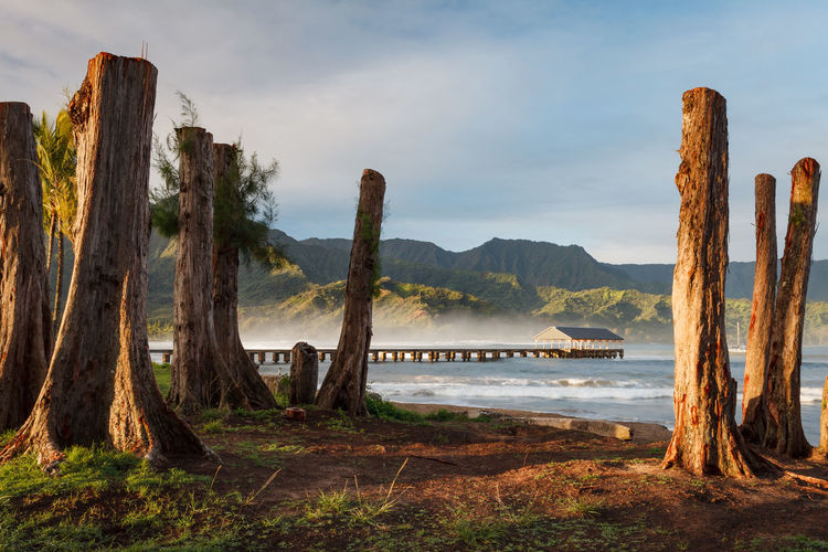 The famous Hanalei Bay and Pier, on the island of Kauai. Hanalei Hanalei Bay  Hanalei Pier Hawaii Kauai Beauty In Nature Dawn Day Landscape Mountain Nature No People Ocean Outdoors Pacific Ocean Princeville Scenics Sky Sunrise Tranquil Scene Tranquility Tree Water