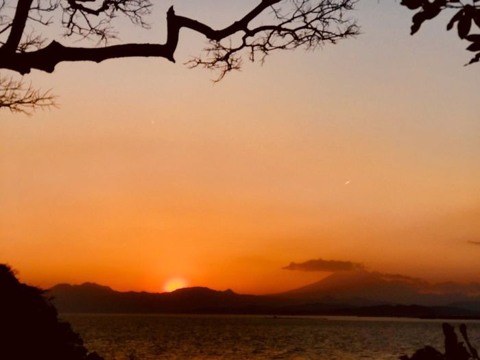 My. Fuji sunset Sunset Silhouette Orange Color Nature Beauty In Nature Scenics Sky Tranquility Sea And Sky Seascape Seaside Mt. Fuji Japan Japan Photography Water Mountain Tree Iphone7plusphoto Iphone7plusphotography