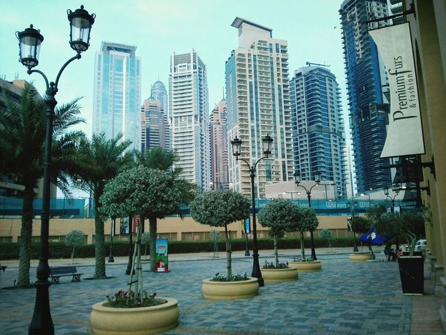 JBR Dubai Jbr مارينا دبي دبي_تصويري