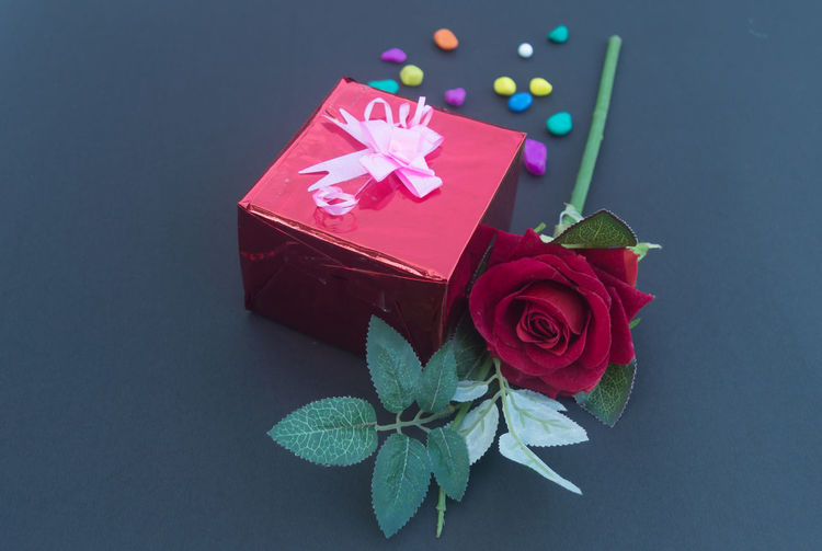 Close-up of red rose in box
