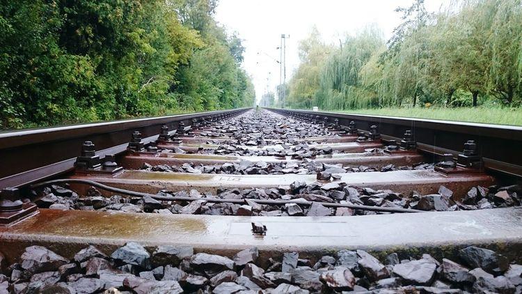 Railroad in the rain
