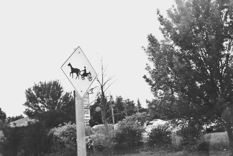 Watch out. Guidance Road Sign Tree Human Representation Arrow Symbol Crossing Sign Communication Direction Day Warning Sign No People Low Angle View Outdoors Railway Signal One Way Clear Sky Sky EyeEmNewHere Blackandwhite