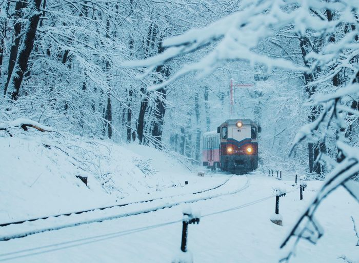 Budapest Hungary Tranquility Wintertime Beauty In Nature Cold Temperature Frozen Nature_collection Nature_perfection Naturelovers Scenics Season  Snow Snowing Tranquil Scene Transportation Weather White Color Winter Winter Forest Winter Wonderland Winter_collection