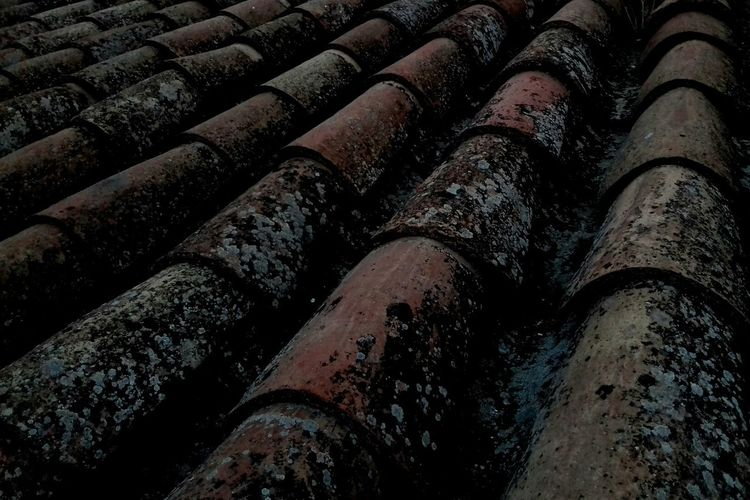 Roof Roof Tiles Textured  Outdoors Architecture Day Building Exterior Tranquility Tranquil Scene No People City