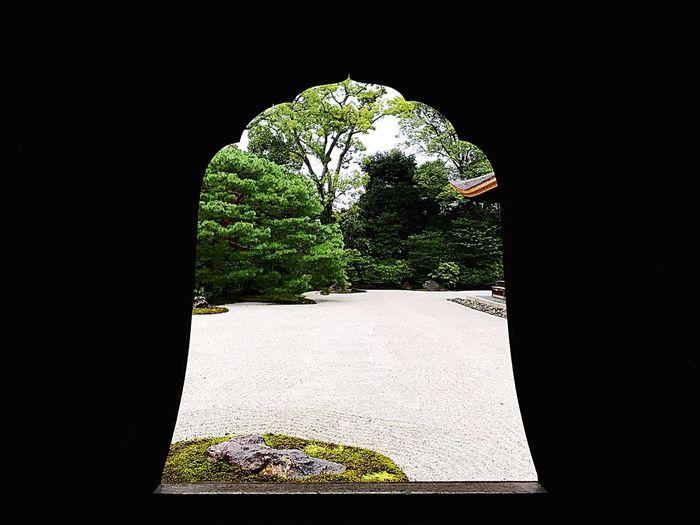 建仁寺。kenninji temple No People Architecture Black Background Nature Kyoto Kenninji Temple Garden Japan Japan Photography