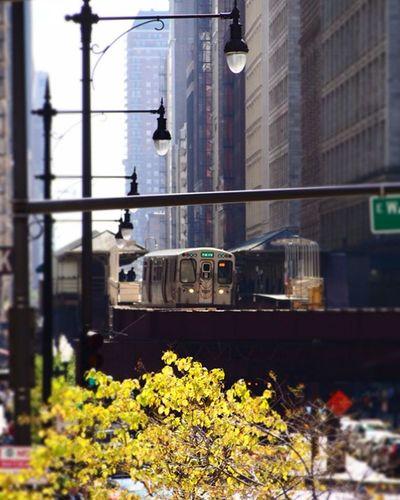 CTA train in Chicago ------------------------------------------- Olympus ExploreUSA Chicago Explorechicago CTA Train Wanderlust Travelgram Fall Overhead Windycity Olympus Wanderlustcontest America