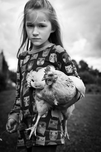 portrait of cute girl standing on field against sky with chicken bird in hands Animal Themes Bird Casual Clothing Chicken - Bird Childhood Cute Day Domestic Animals Field Focus On Foreground Front View Girls Leisure Activity Lifestyles Livestock Looking At Camera One Animal One Person Outdoors Portrait Real People Rural Scene Sky Standing
