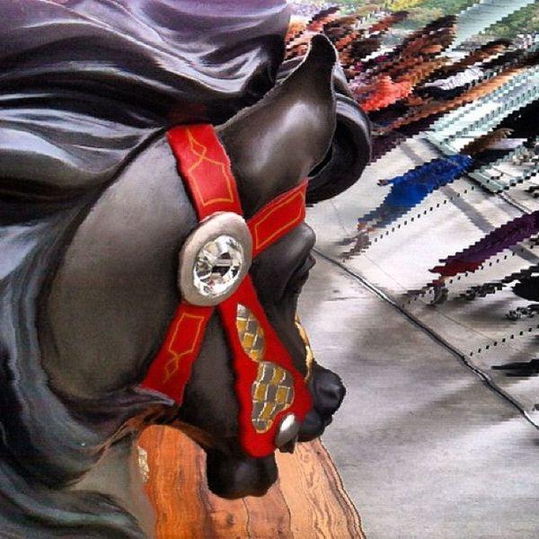 Jane's carousel #dumbo #slitscan DUMBO Slitscan