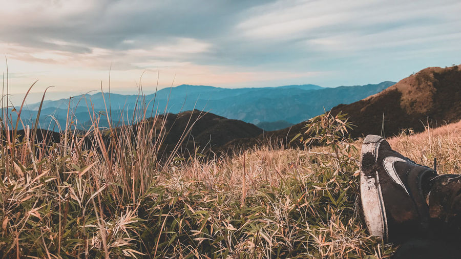 Chillin at Mount Pulag! EyeEmNewHere Philippines Beauty In Nature Cloud - Sky Day Field Grass Growth Itsmorefuninthephilippines Landscape Mountain Mountain Range Nature No People Outdoors Plant Scenics Sky Tranquil Scene Tranquility EyeEmNewHere Modern Workplace Culture Go Higher The Still Life Photographer - 2018 EyeEm Awards