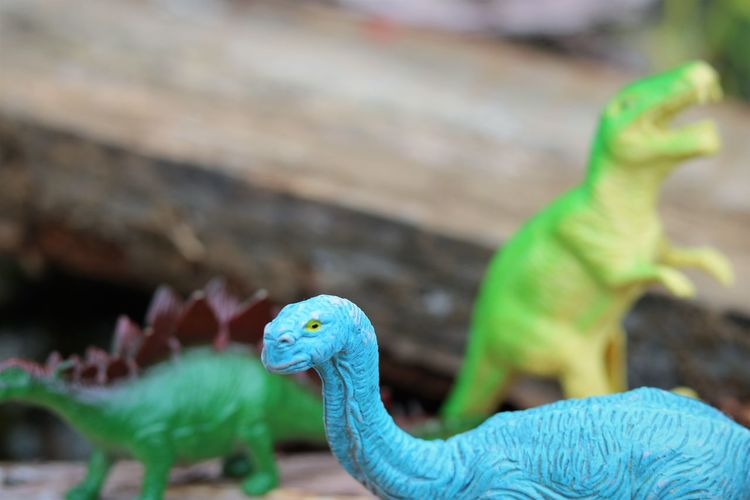 Dinosaurs Creative Play Photography Creativity Child's Play Close-up Day Dinosaur Focus On Foreground Green Color Nature No People Not Real Plastic Toys Representation Reptile Selective Focus Side View Toy