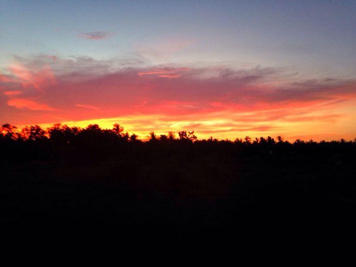 Firey Sky |