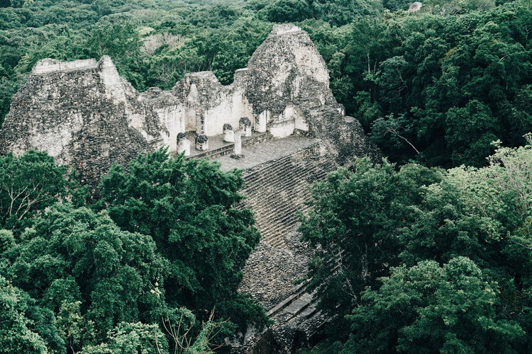 High angle view of historic building amidst trees in forest