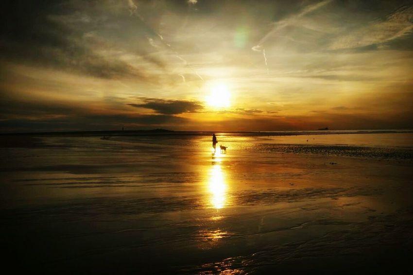 Sonnenuntergang in Neuwsvliet (Holland)