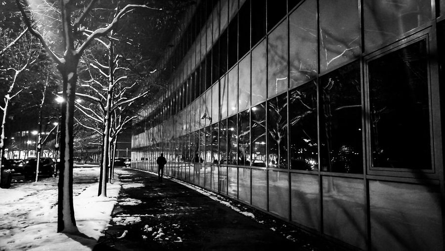 Architecture Building Exterior Built Structure Night Illuminated Snow Tree City Street Nature Winter Cold Temperature Reflection Outdoors Building Lighting Equipment Glass - Material Snowing One Person Blackandwhite Black And White Monochrome Mobile Photography Mobilephotography
