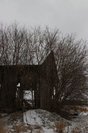 Exploring Abandoned Architecture Bare Tree Day Nature No People Outdoors Sky Snow Tree