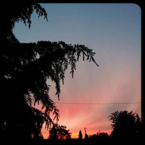 5. Environment. #fmsphotoaday #sunset Sunset Tacoma Fmsphotoaday #fmsphotoaday