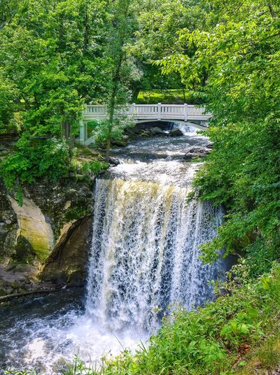 Minneopa State Park Waterfall Motion Water River Tree Scenics No People Built Structure Forest Outdoors Nature Green Color Long Exposure Rapid Beauty In Nature Day Architecture Freshness Malephotographerofthemonth Streamzoofamily Tranquility Beauty In Nature Landscape