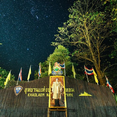Long live the king. Vscocam Star Milkyway Photo_forest_gold Amzthld Thailand Thailand_allshots Sublimewilderness King Outersphere Teamtraveler Theglobewonderer Oakstallion Thenaturalearth