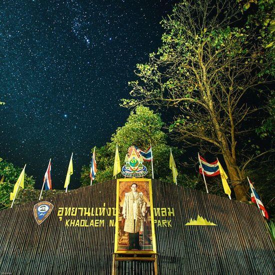 Long live the king. Vscocam Star Milkyway Photo_forest_gold Amzthld Thailand Thailand_allshots Sublimewilderness King Outersphere Teamtraveler Theglobewonderer Oakstallion Thenaturalearth