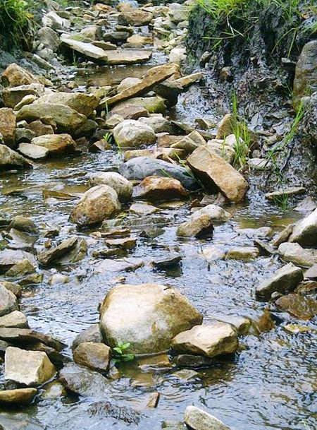 River Beauty In Nature Nature Nature Rock - Object Water Pebble No People Outdoors
