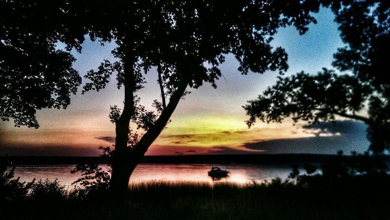 Showcase June Lake View Landscape_Collection