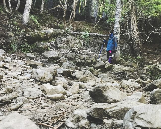 Woman standing by rocks in forest