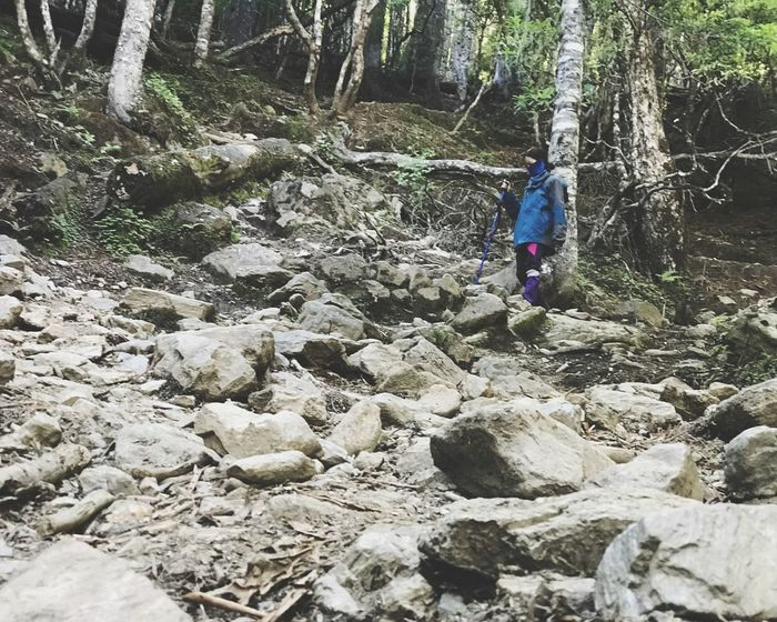 Trekking Forest Hiking Tree Real People Lifestyles Leisure Activity One Person Full Length Day Forest Nature Solid Plant Rock Rock - Object Walking Adventure Outdoors WoodLand Land The Traveler - 2018 EyeEm Awards