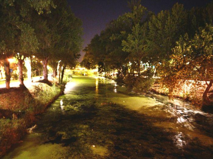 Nightphoto Water Illuminated Outdoors Night Nature City Lights Beauty In Nature Scenics playing with exposure